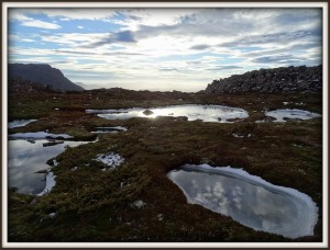 Mount-Field_national-park_frozen-puddles