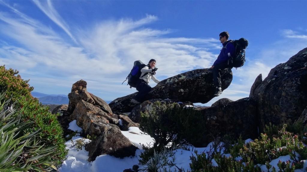 Mount-Field_national-park_seesaw